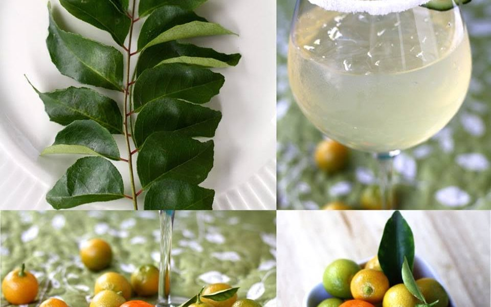 Recipes from Your Neighbors: Curry Leaf Calamansi - The
